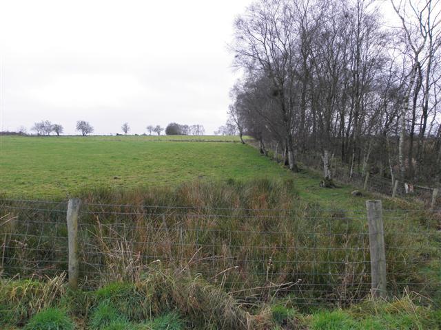 Rushy ground, Bancran