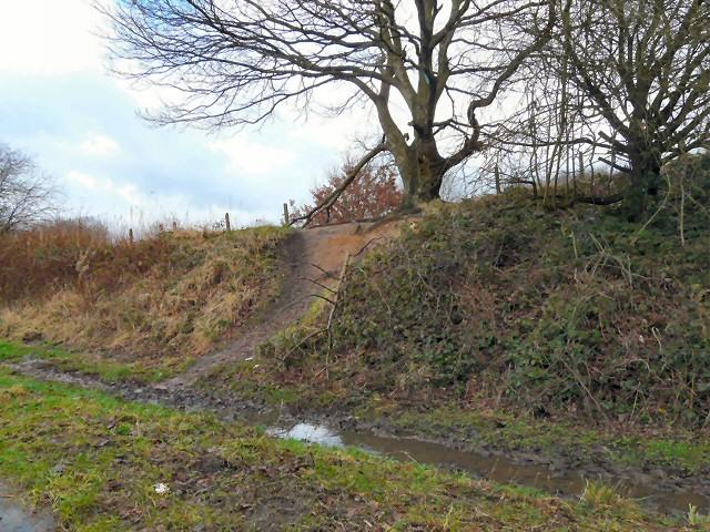 Former railway embankment