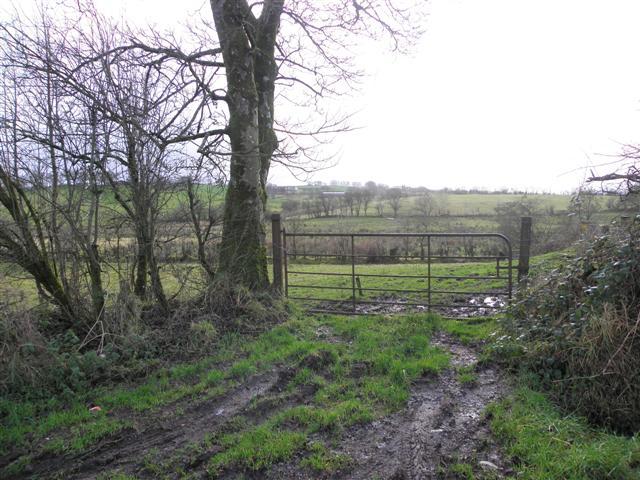 Gate, Bancran