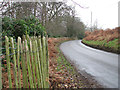 TG4901 : To Browston Green on Lound Road by Evelyn Simak