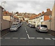 ST3288 : Carisbrooke Road, Newport by Jaggery
