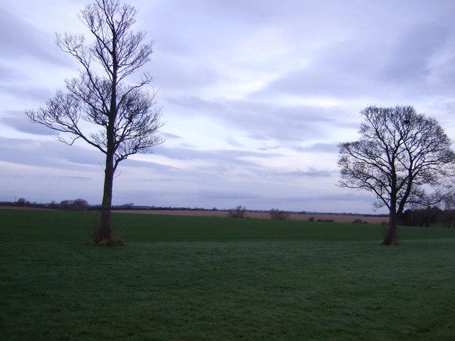 Farmland, Aislaby West Farm