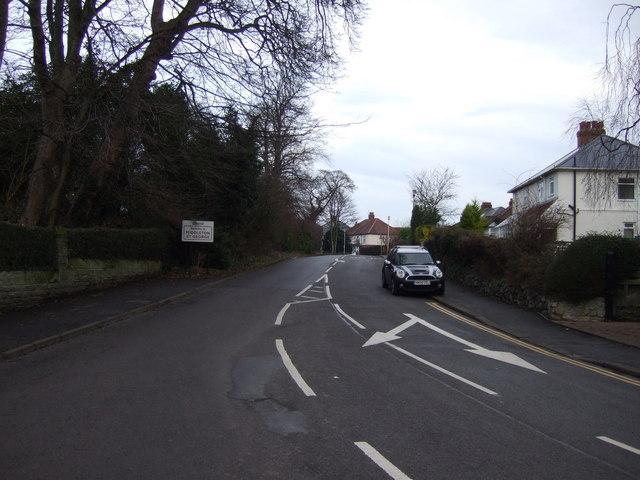Middleton Lane, Middleton St.George