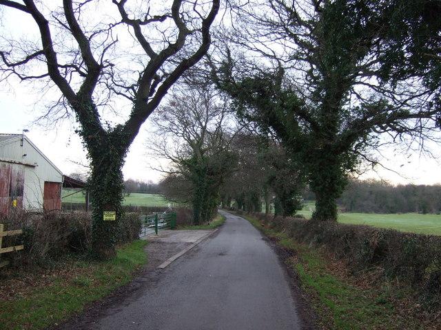 Lane to Dinsdale Park