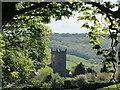 SD3598 : View through trees to Hawkshead Church by Colin Park