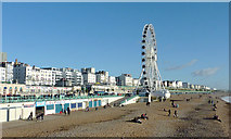 TQ3103 : Seafront, wheel, and beach at Brighton by Roger  Kidd