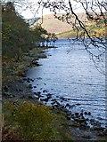NN6523 : South Loch Earn at Finglen Wood by Alan Reid