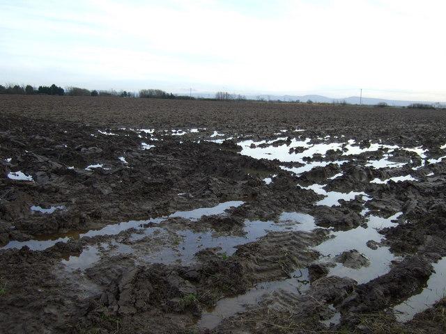 Waterlogged field off Carter's Lane
