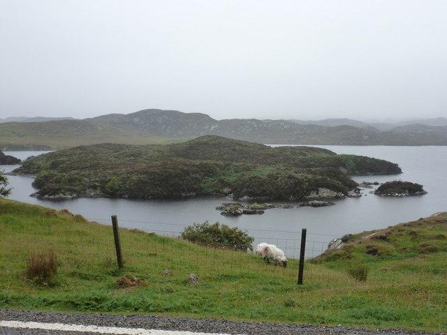 Plocropol: an island in Loch Plocropol