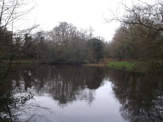 Scio Pond, Putney Heath