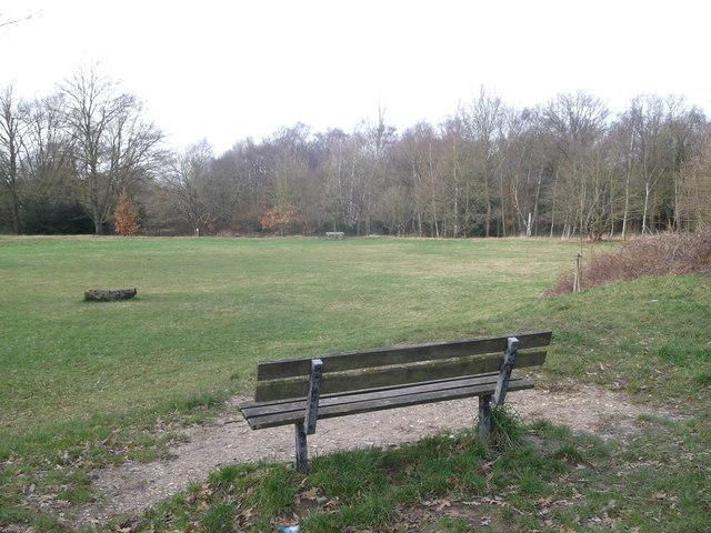 Seating, Putney Heath