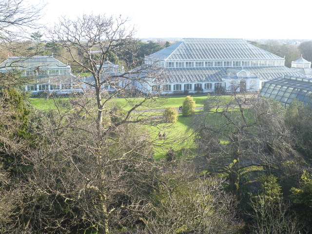 Temperate House at Kew Gardens from the Treetop Walkway