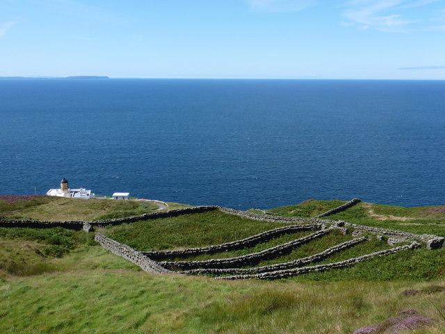 Mull of Kintyre: undulating sheepfold