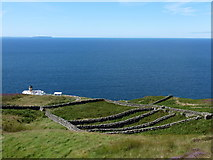 NR5808 : Mull of Kintyre: undulating sheepfold by Chris Downer