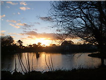 TQ1876 : Sunset over the Palm House at Kew Gardens by Marathon