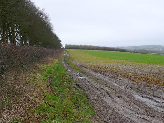 Field near Cuckoo Lane