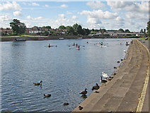 SK5838 : Victoria Embankment in July by John Sutton
