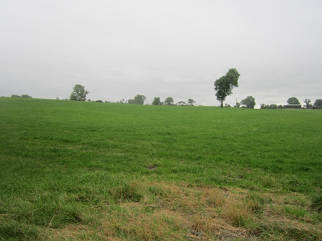 Grass field, Knockaraheen