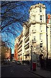 TQ3081 : Queens Square, WC1 by David Hallam-Jones