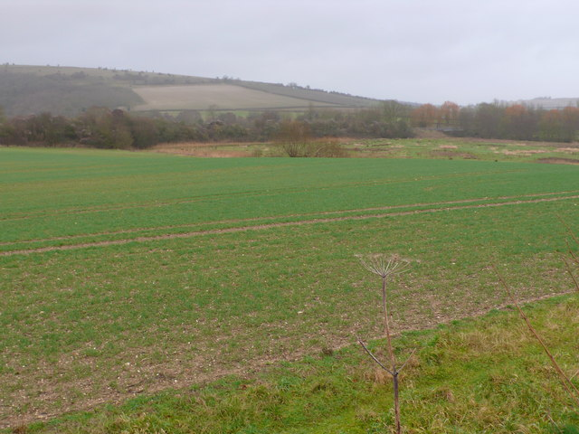 Fields next to the River Stour