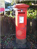 TL1314 : Douglas Road George V Postbox by Adrian Cable