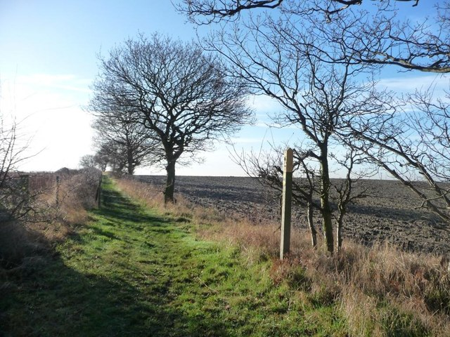 Waymark on the footpath to Hollinthorpe
