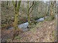 SS9088 : The Afon Garw in woodland between Tylagwyn and Pont-y-rhyl by eswales