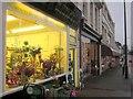 SX9064 : Flower shop, Lucius Street, Torquay by Derek Harper