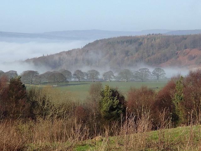 Winter afternoon above the Derwent valley