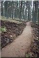 NJ1623 : New mountain bike trail, Glenlivet Estate by Dorothy Carse