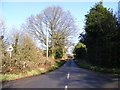 TL0916 : Kennel Lane, Kinsbourne Green by Adrian Cable