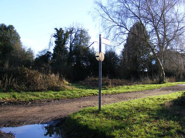 Footpath to Shepherds Way