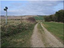 SU3477 : Byway heading to Eastbury by Shaun Ferguson