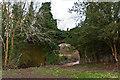 SO5376 : Bridge over Ledwyche Brook by Ian Capper
