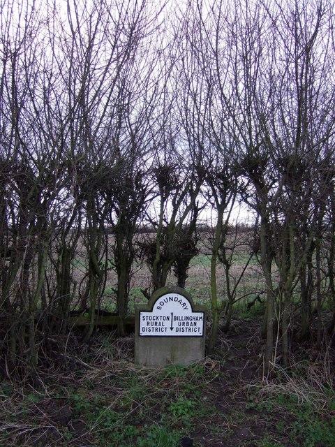 Boundary stone and hedgerow, Wolviston Mill Lane