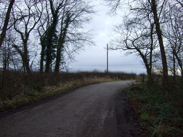 Track off Wynyard Road
