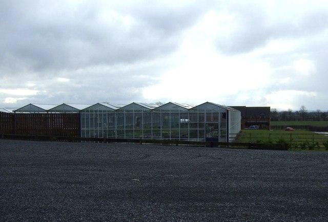 Glasshouses, Nine Acres Nursery,Darlington Back Lane