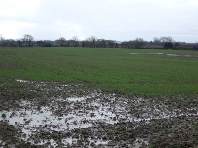 Farmland off Darlington Back Lane