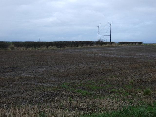 Farmland, East Newbiggin