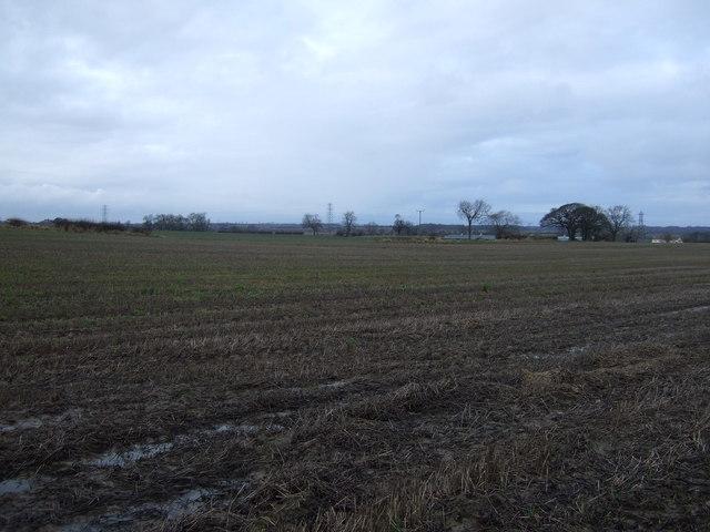Farmland, West Newbiggin
