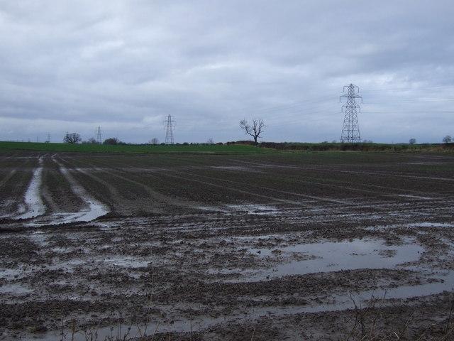 Farmland, Sauf Hill