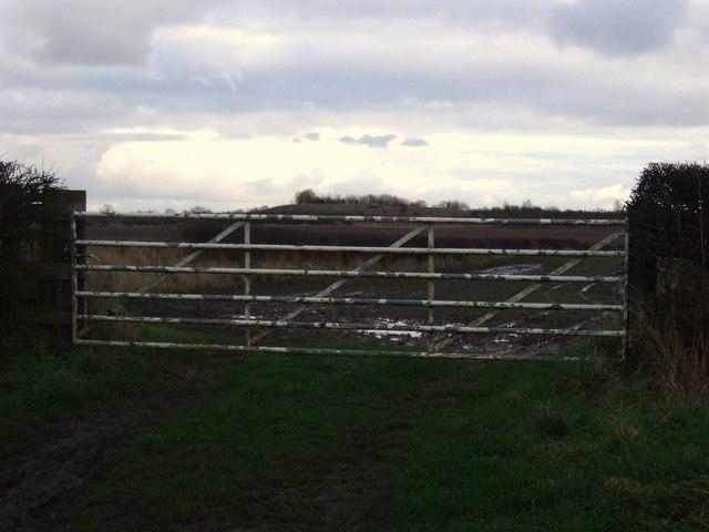 Field entrance, Stoney Flatt Farm