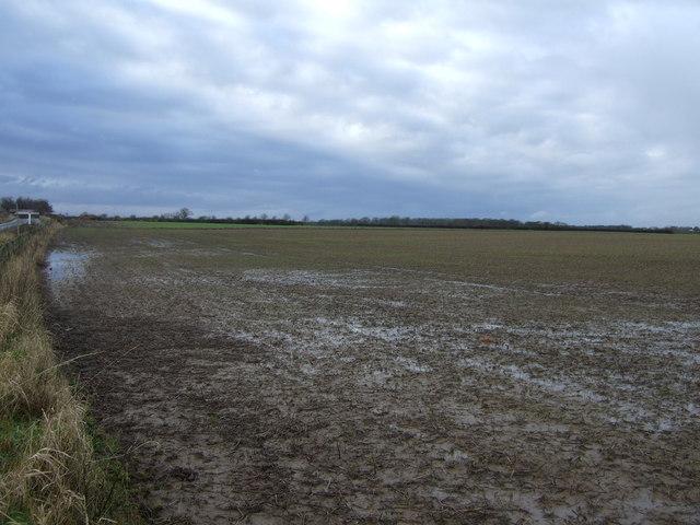 Farmland, Hambleton View