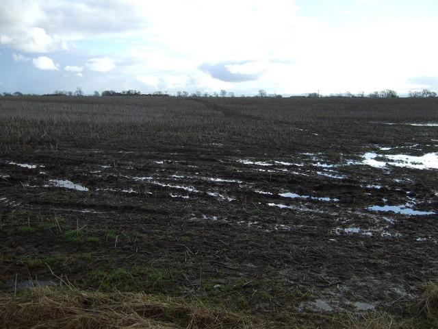 Farmland off Mill Lane