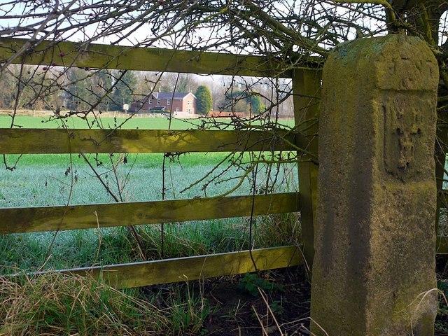River Tyne Tide Stone & Heddon Haugh Farm