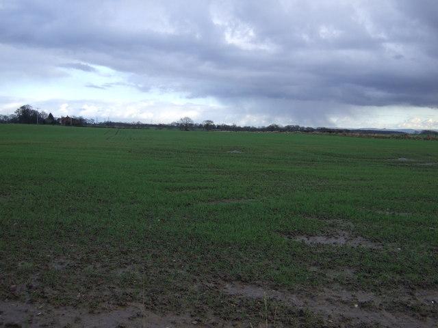 Farmland off Spring Lane