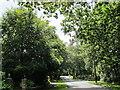 TQ5131 : Goldsmiths Avenue, TN6 by Mike Quinn