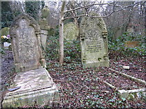 TQ3386 : Abney Park Cemetery by Dave Pickersgill