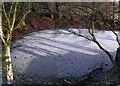SJ9893 : Farm Pond by Stephen Burton