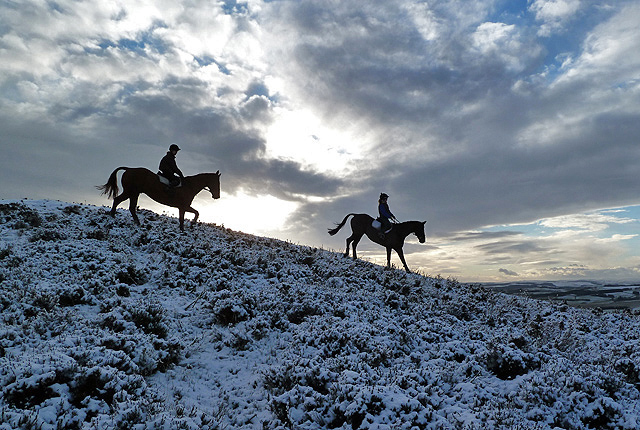 Horse riders on Eildon Wester Hill